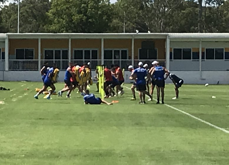 Eels Pre-Season Training – January 13, 2021: The King Has Spoken